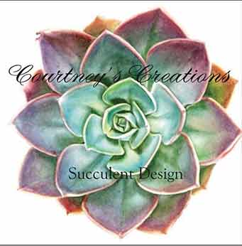Courtney's Creations succulent logo